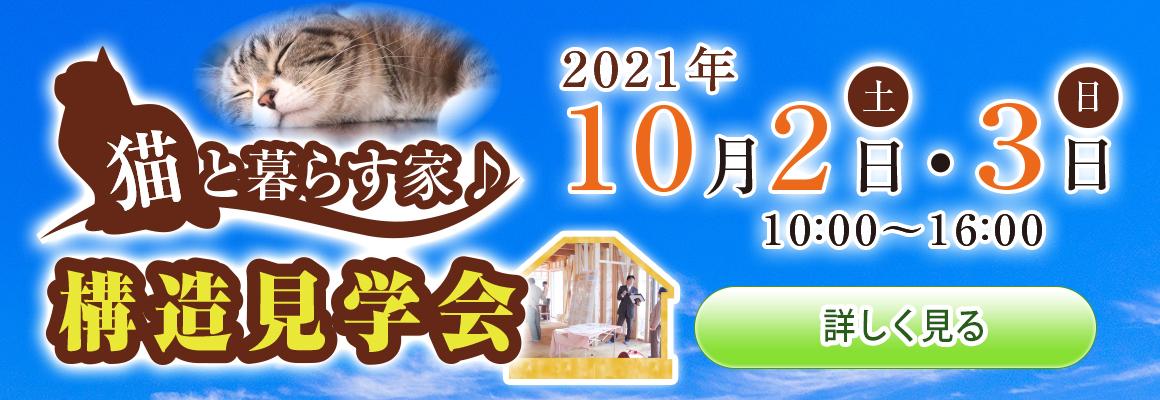 2021年9月 構造見学会(猫と暮らす家)バナー