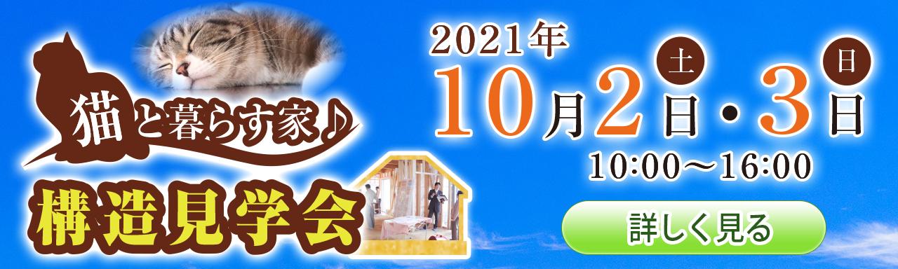2021年10月開催「猫と暮らす家 構造見学会」<br>(再生すると音が出ます)のバナー